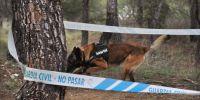 La Guardia Civil destina medio millón de euros a comprar 180 perros