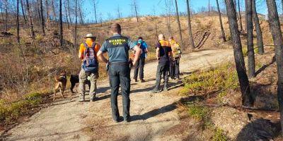 Los grupos externos con perros de rescate piden a Interior una homologación