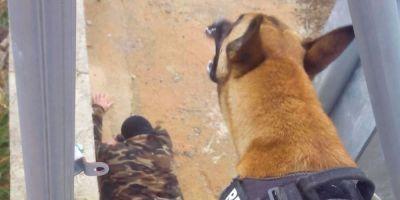 """Diego Luque: """"Criar al perro en casa es un plus para su trabajo"""""""