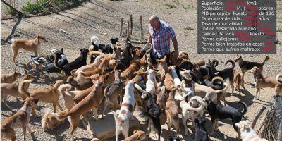 Karl Scarr, el ángel de los perros de Marruecos