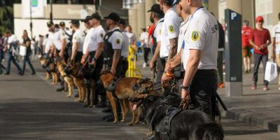 Los perros de seguridad del Santiago Bernabéu