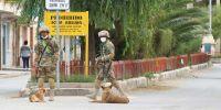 Los militares bolivianos llevan a sus perros para hacer cumplir el confinamiento