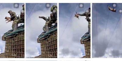 Vídeos de perros lanzados por los aires se viralizan con total impunidad: el último, de un soldado