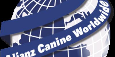 Razas de perros reconocidas por  Alianz Canine WorldWide