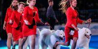 Ni 2020, ni 2021, la exposición canina mundial se traslada a 2022