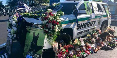 El asesino del perro policía de Florida podría ser condenado a cadena perpetua