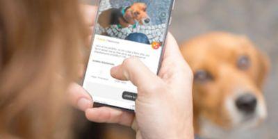 Walkee, la App que mejora la vida canina