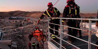El voluntariado de rescate con perros se codea con los profesionales