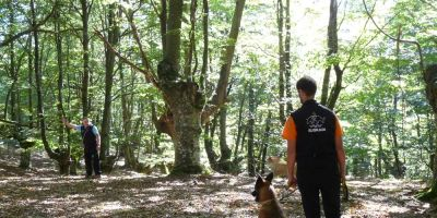 Los perros GPS del País Vasco