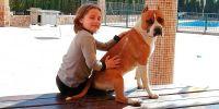 ¿Desaparecerá o no la Ley de perros PPP?