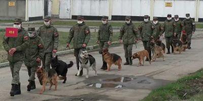 Los Juegos Militares rusos se reinventan